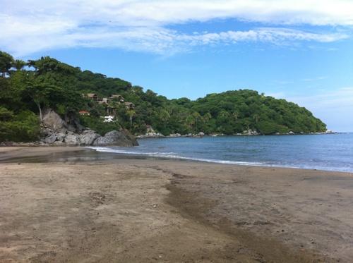 Sayulita Beach Clean Up! 005
